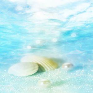 Akvaryum ve Deniz